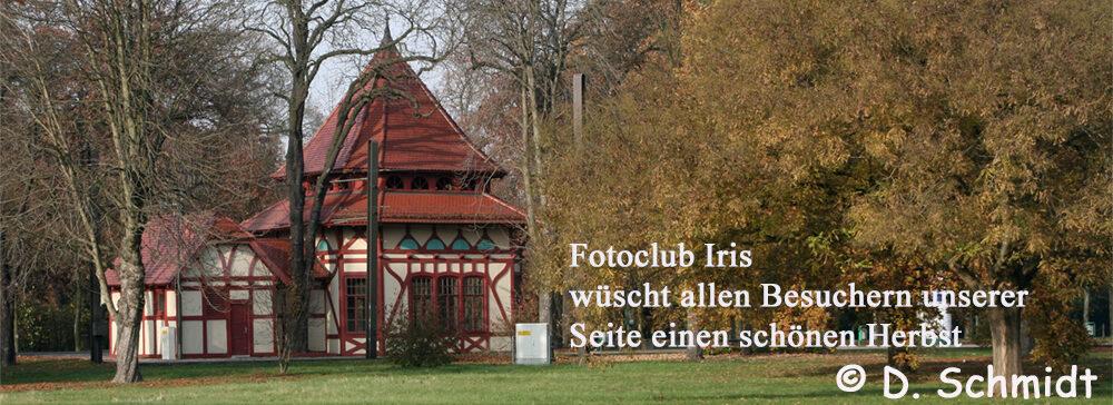 Fotoclub Iris